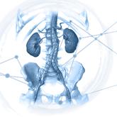 Webinar Aorte Abdominale 1er Mars